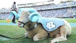 Download A Day in the Life | Rameses the Carolina Mascot Video