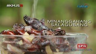 Download Kapuso Mo, Jessica Soho: Salagubang delicacy in Nueva Ecija Video