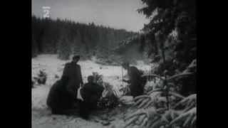 Download Ťažba dreva na Orave (1960) Video