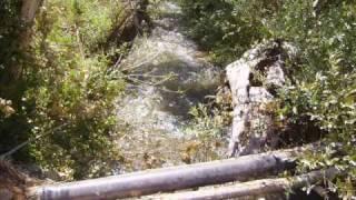 Download Topaktas / Grup Destan - Dere Boyu Kavaklar Video