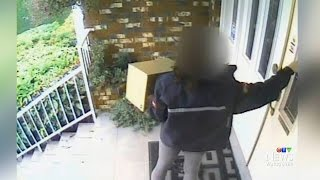 Download Alleged theft by Canada Post worker prompts investigation Video