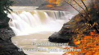 Download Marilion - Beautiful ″Lindo″ - Tradução Video