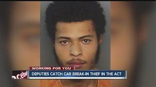 Download Deputies foil car break-in in progress, make arrest Video