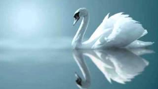 Download Claude Debussy : Clair de Lune, for Piano (Suite Bergamasque No. 3), L. 75/3 Video