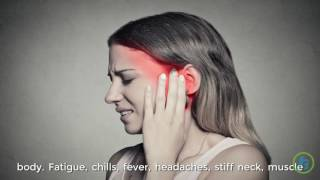 Download Symptoms of Lyme Disease Video