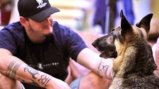 Download Medical Service Dog Helps Iraq War Veteran and Family Video