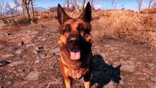 Download Fallout 4 Dogmeat montage Video