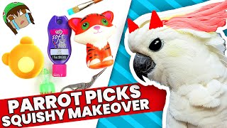 Download THE WORST CHOICES! My PARROT Picks My Squishy UnMakeover Supplies Challenge #4 Video