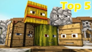 Download Top 5 Minecraft Hide and Seek Animations Video