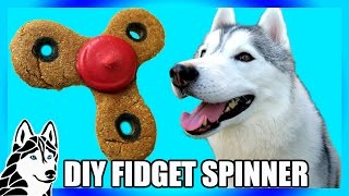 Download DIY FIDGET SPINNER DOG TREAT | DIY Dog Treats | Snow Dogs Snacks 73 Video