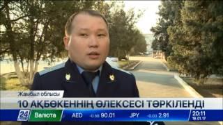 Download Жамбыл облысында ақбөкен атқандар іздестіріліп жатыр Video