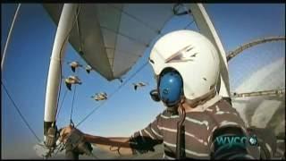 Download The Secret Routes of Migratory Birds Video