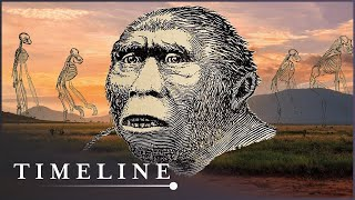 Download The First Human (Evolution Documentary) | Timeline Video