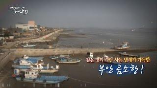 Download 바다 냄새 가득한 푸른 활력의 항구! 부안 곰소항 Video