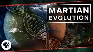 Download Martian Evolution | Space Time Video