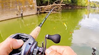 Download Two Unexpected Catches On BIG Muskie Baits While Exploring New Stretch Of River Video