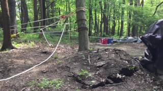 Download Uprooting a tree using a 45 to 1 pulley system Video