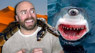Download 10 CRAZY Mutated Animals That Actually Exist! Video
