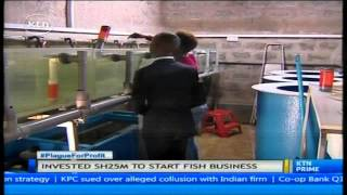 Download The adventurer: Jambo fish farm generating 15 million shillings in turnover annually Video