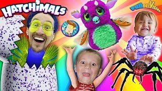 Download SPIDER HATCHIMALS EGG HATCHING! FUNnel V Surprise Inside the Toy Opening Video