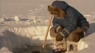 Download Arctic Fishing - Ray Mears World of Survival - BBC Video
