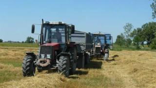 Download Búza aratás 2011 Video