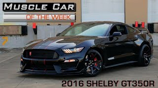 Download 2016 Ford Mustang Shelby GT350R: Muscle Car Of The Week Video Episode 229 V8TV Video