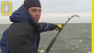 Download Fishing Tips: How to Reel in a Fish | Wicked Tuna: Outer Banks Video