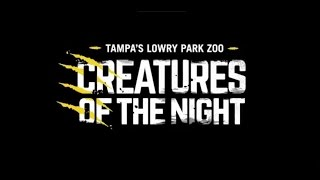 Download Creatures of the Night: Opening Weekend Video