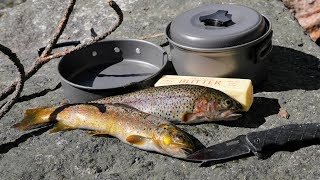 Download Catch and Cook and Camp Ep. 3 * Solo 2 Night 3 Days in the Wild * No Tent Video