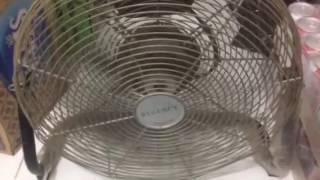 Download 16″ Regency industrial tornado floor fan Video