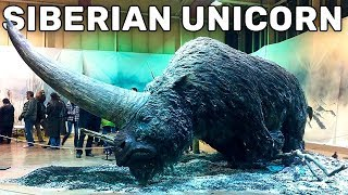 Download 10 EXTINCT ANIMALS THAT WILL BE RESURRECTED SOON Video