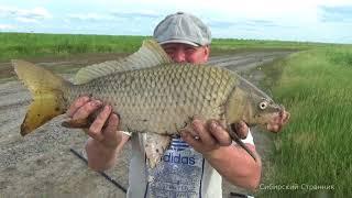 Download Жесть, чуть не убило на рыбалке. Сазан клюет все крупнее и крупнее. Video