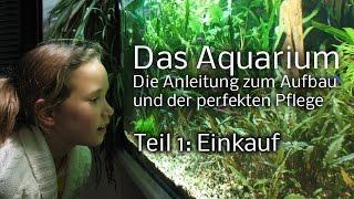 Download Das Aquarium - Die Anleitung zum Aufbau und Pflege. Teil 1: Einkauf Video