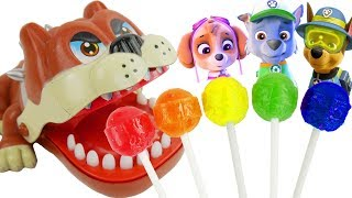 Download Paw Patrol Baby Skye Dog Wrong Crocodile Dentist Finger Family Song Chupa Chups Lolli Pops Learning Video