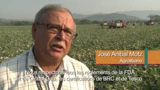 Download Le CODEX au Honduras Video