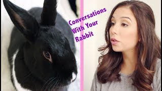 Download Conversations You Have With Your Rabbit Video