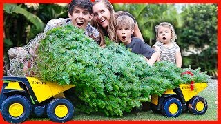 Download DUMP TRUCK CHRISTMAS TREE DELIVERY Video
