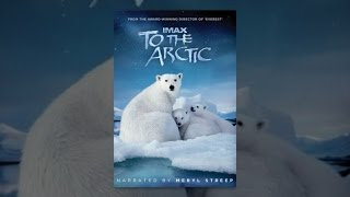 Download To The Arctic Video