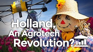 Download Why The NETHERLANDS is the World's AGRICULTURE leader? - VisualPolitik EN Video