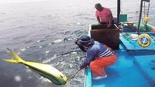 Download Tres Hombres de Mar Trabajan Pescando Peces GRANDES en medio del Océano Video