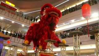 Download CNY 2013 ~ Acrobatic lion dance (跳高樁舞獅 Múa Lân) by Khuan Loke @ Tropicana City Mall Video