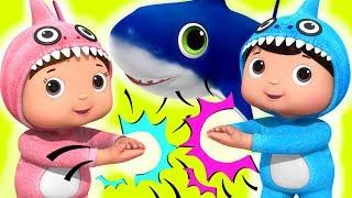 Download Baby Shark!   Baby Songs   Nursery Rhymes & Kids Songs   Little Baby Bum Video