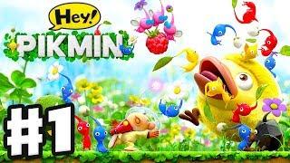 Download Hey! Pikmin - Gameplay Walkthrough Part 1 - Sector 1: Brilliant Gardens! All Treasures! Nintendo 3DS Video