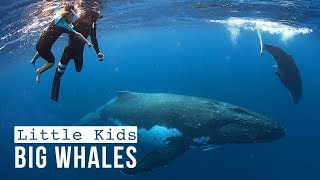 Download OUR LAST VLOG as a Full-Time Traveling Family :( /// WEEK 121 : Tonga Video
