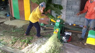 Download เครื่องสับ/ตี 2in1 Mini สับหญ้า สับหยวก สับกิ่งกระถิน จุกสับปะรด กล้วยดิบ เล็ก/เร็ว/แรง/แข็งแรง-คงทน Video