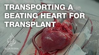 Download Transporting a beating heart for transplant - TechKnow Video