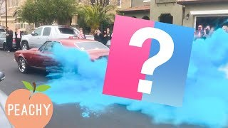 Download It's a BOY! These Gender Reveals Will Make Your Heart Race Video