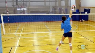 Download Hitting Tips - Terry Liskevych - The Art of Coaching Volleyball Video