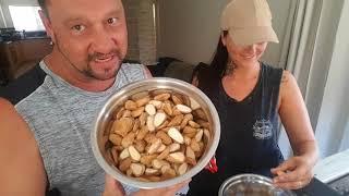 Download Easy Way to Open Bunya Nuts Video